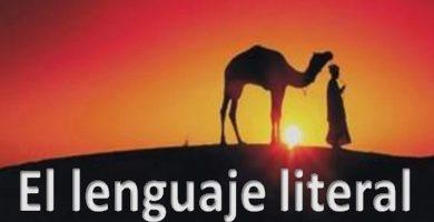 lenguaje literal